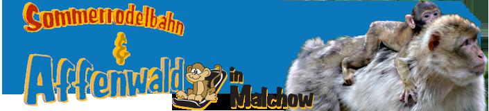 Sommerrodelbahn und Affenwald Malchow (mv)